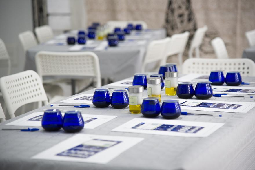 Sesión de cata de aceite de oliva virgen extra en Cazorla